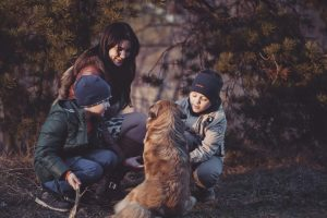 Exercise your dog this Winter